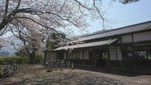中継 テレビでお花見!桜スポット巡り